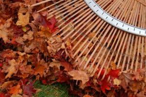 leaf raking tips